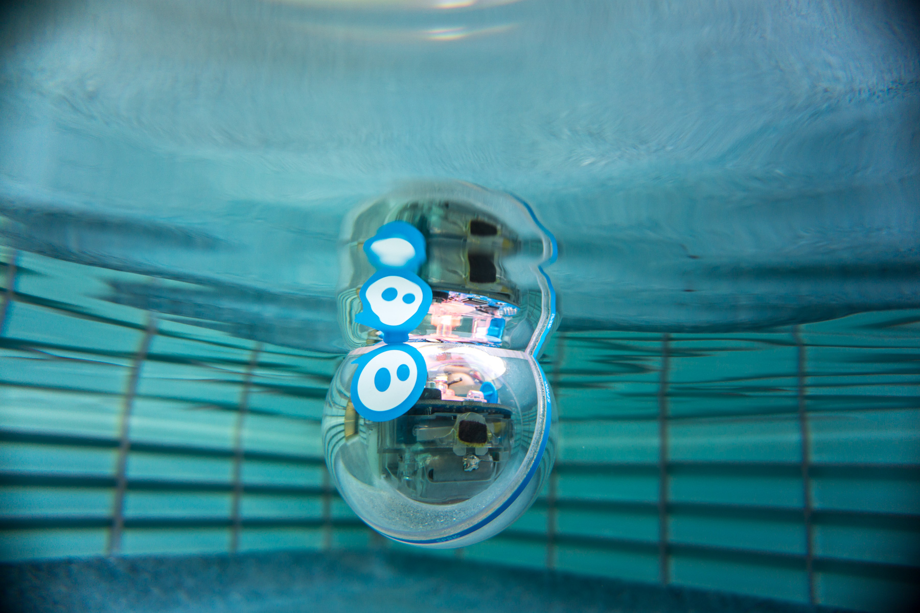 Sphero SPRK+ product photo floating underwater in pool.