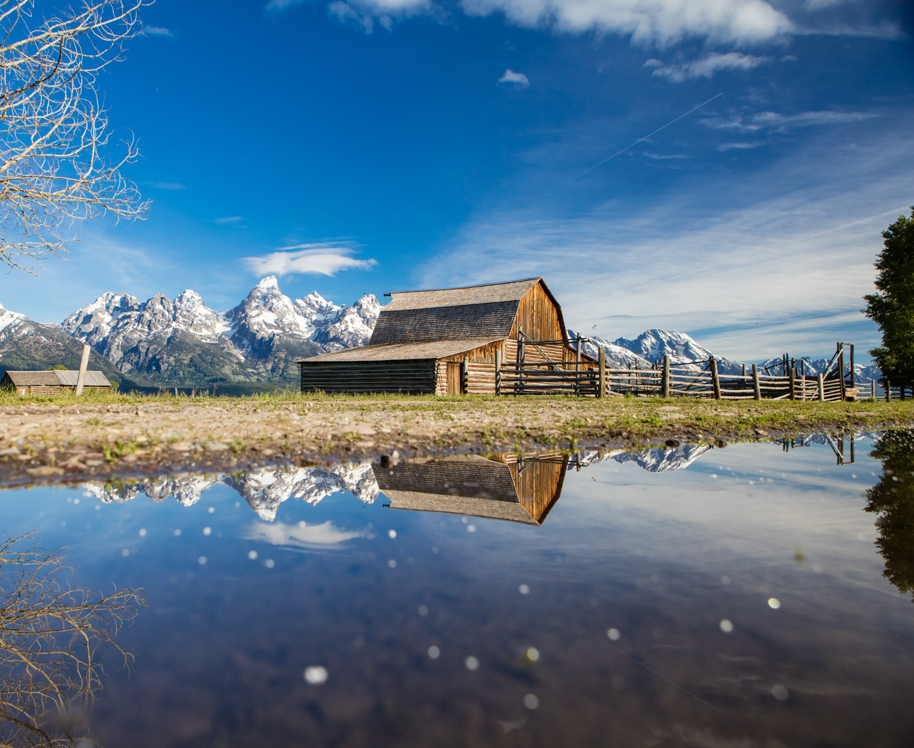 Moulton Barn on Mormon row in Grand Teton National Park reflected in puddle.