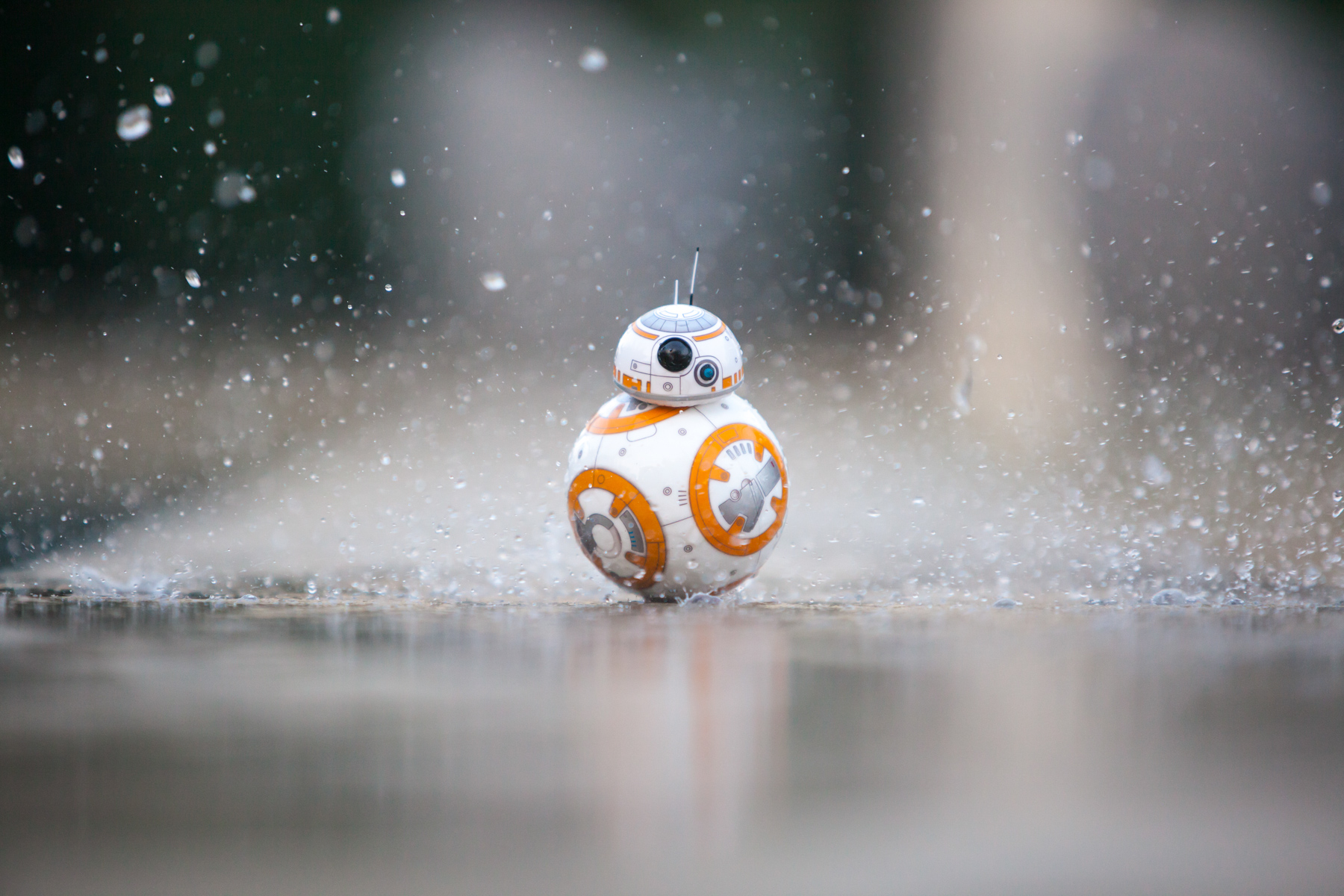 Sphero BB-8 robot by Star Wars rolling towards the camera while getting splashed by water.